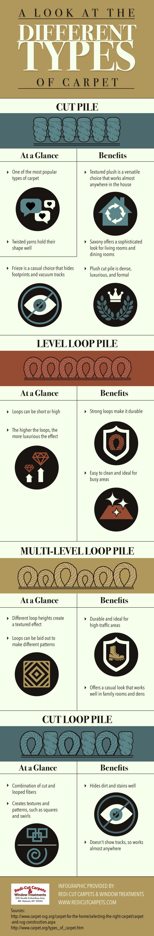 Infographic Explaining Different Types of Carpets